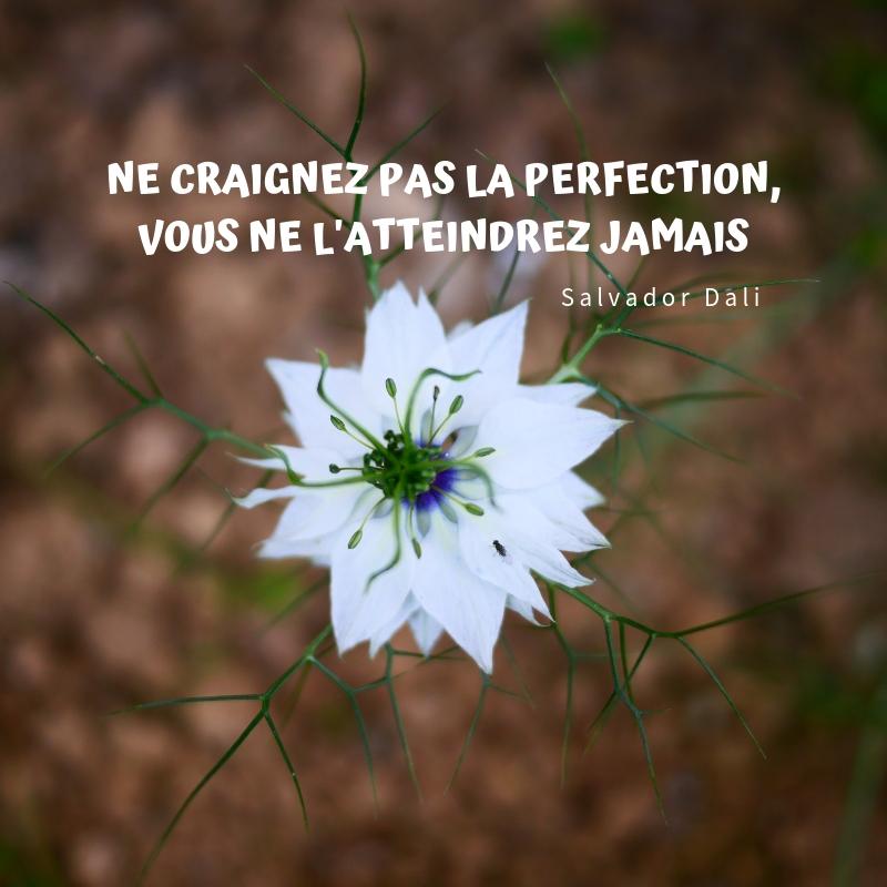 citation perfection